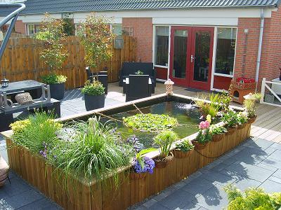 Forums show vijver tuin onze trots de for Vijver voor kleine tuin